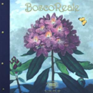 BoscoReal